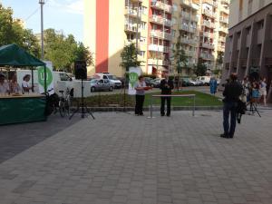 Zsókavár 2-4-6 - Parkosítás és környezetrendezés 11