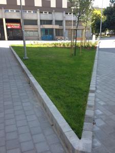 Zsókavár 2-4-6 - Parkosítás és környezetrendezés 4