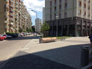 Zsókavár 2-4-6 - Parkosítás és környezetrendezés 5