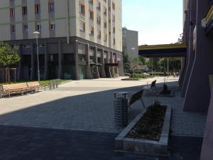 Zsókavár 2-4-6 - Parkosítás és környezetrendezés 6