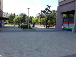 Zsókavár 2-4-6 - Parkosítás és környezetrendezés 8