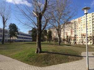 Zsókavár III ütem - Generálkivitelezés és környezetrendezés 5