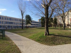 Zsókavár III ütem - Generálkivitelezés és környezetrendezés 6