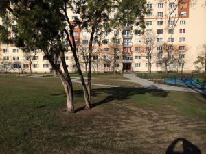 Zsókavár III ütem - Generálkivitelezés és környezetrendezés 9